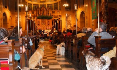 Blessing of the animals, Cindy Adams