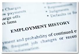 Employment History Report