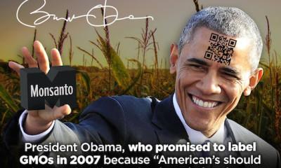 President Obama, The Dark Act
