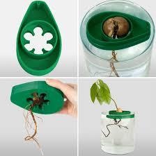 Avocado Seeder