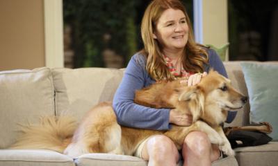Mare Winningham, Marti the dog