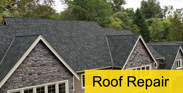 Tag roof repair times square chronicles for Roofing repair