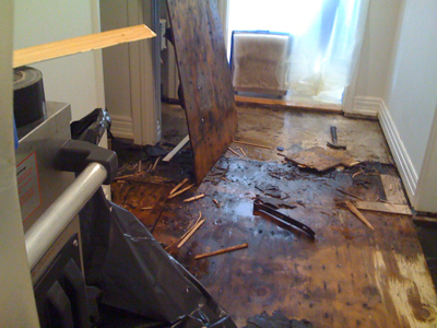 Water Damage Importance Of Proper And Timely Restoration