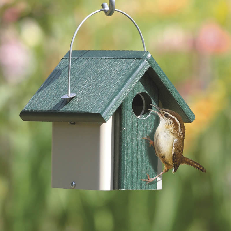 4 Top Tips For Selecting A Good Birdhouse