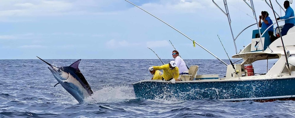 6 Tips for Selecting a Good Charter for Your Fishing Trips ...