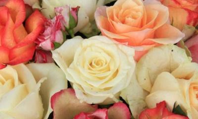 Flowers on-line