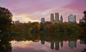 November, New York