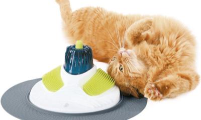 Cat Massager