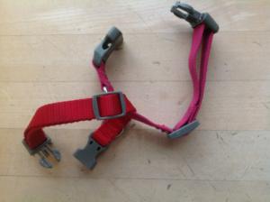 Safety Dog Leash