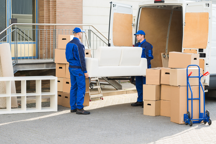 Advantages of Hiring Professional Moving Companies – Mosta Fazizi