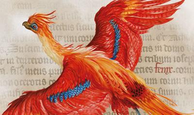 Jim Kay,Harry Potter